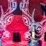 Rosco Image Spot Adds Brilliant Imaging <br>To An Outdoor Light Festival