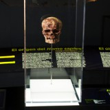 Custom LitePad – Museum Exhibit Lighting Has Evolved