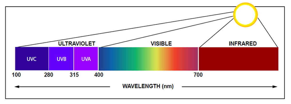 Protecting Artifacts From UV Light - Rosco Spectrum