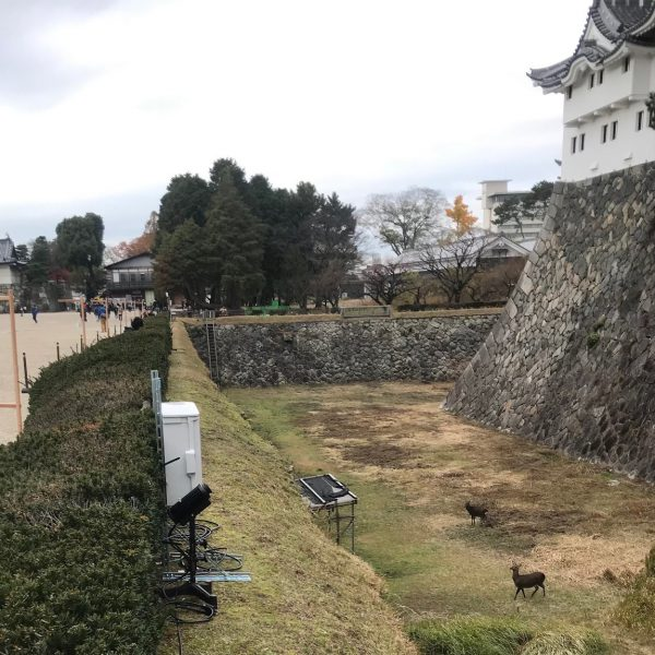 A Rosco Image Spot mounted behind the hedge at Nagoya Castle captures the fusion of ancient tradition and lighting technology.