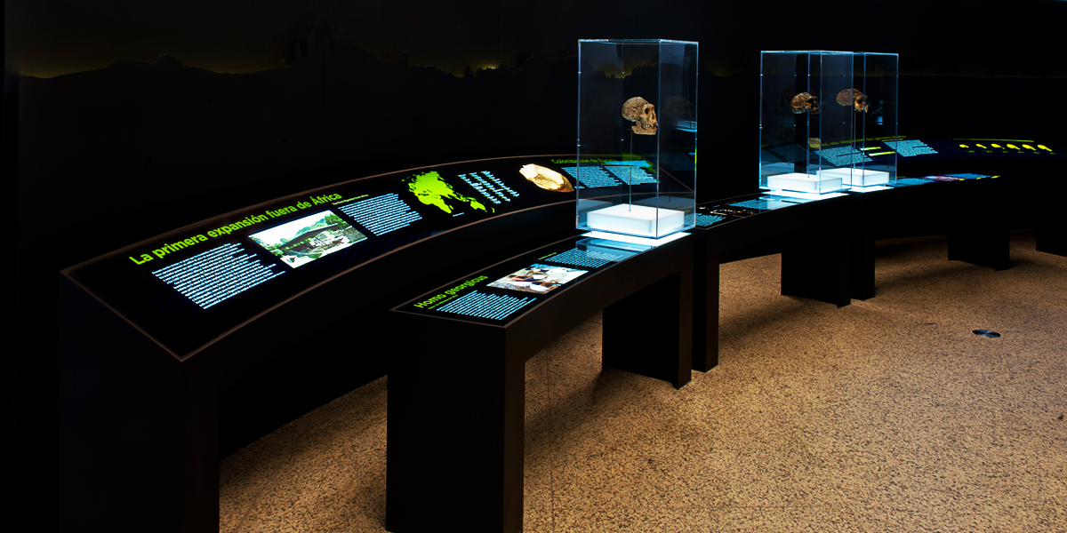 LitePads provide backlighting for signage and up lighting for display cases in the exhibits